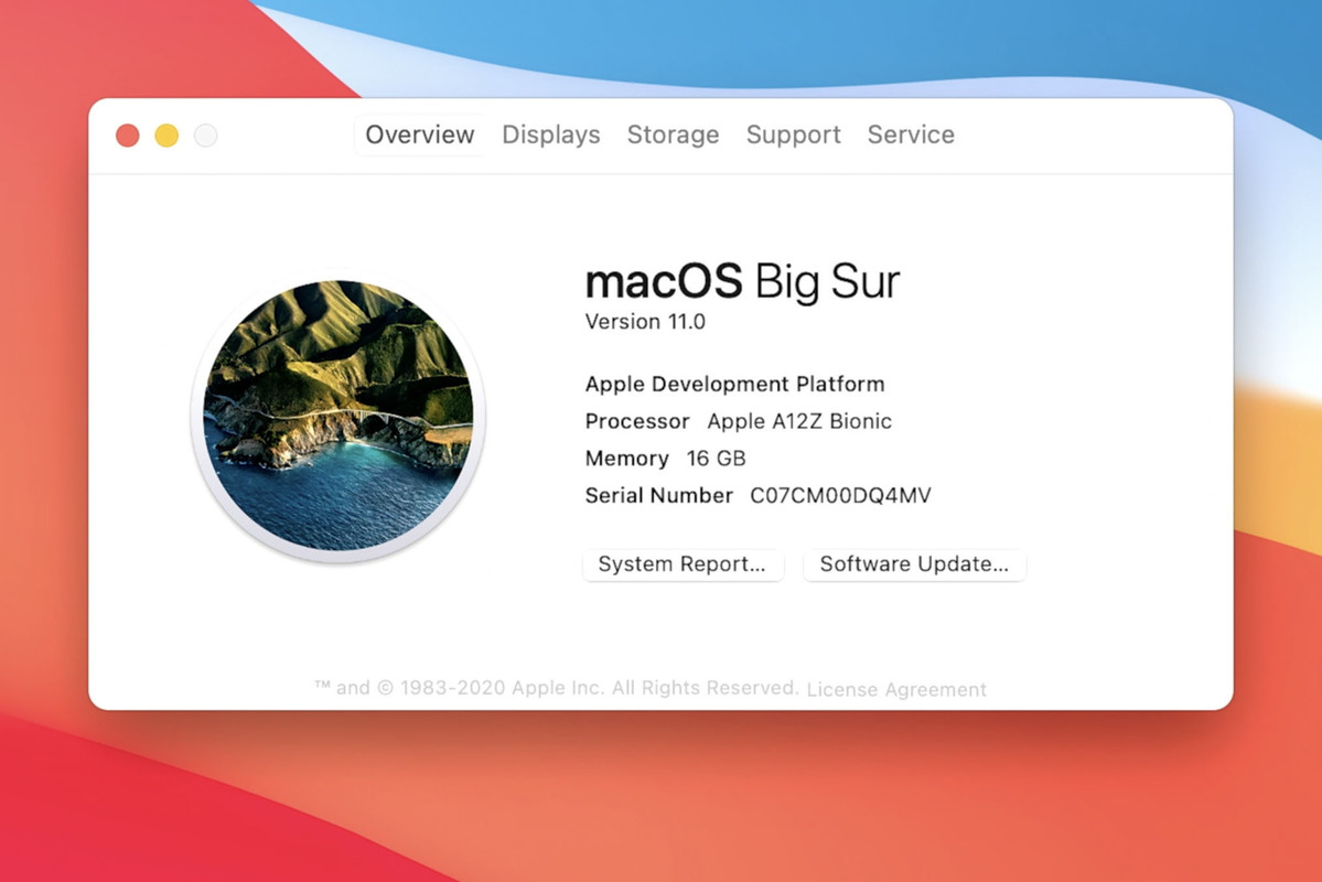 macos big sur dev kit