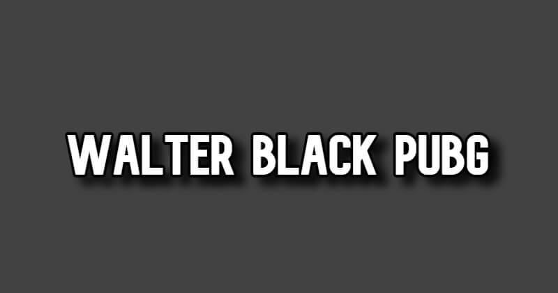 Walter Black Pubg Mod