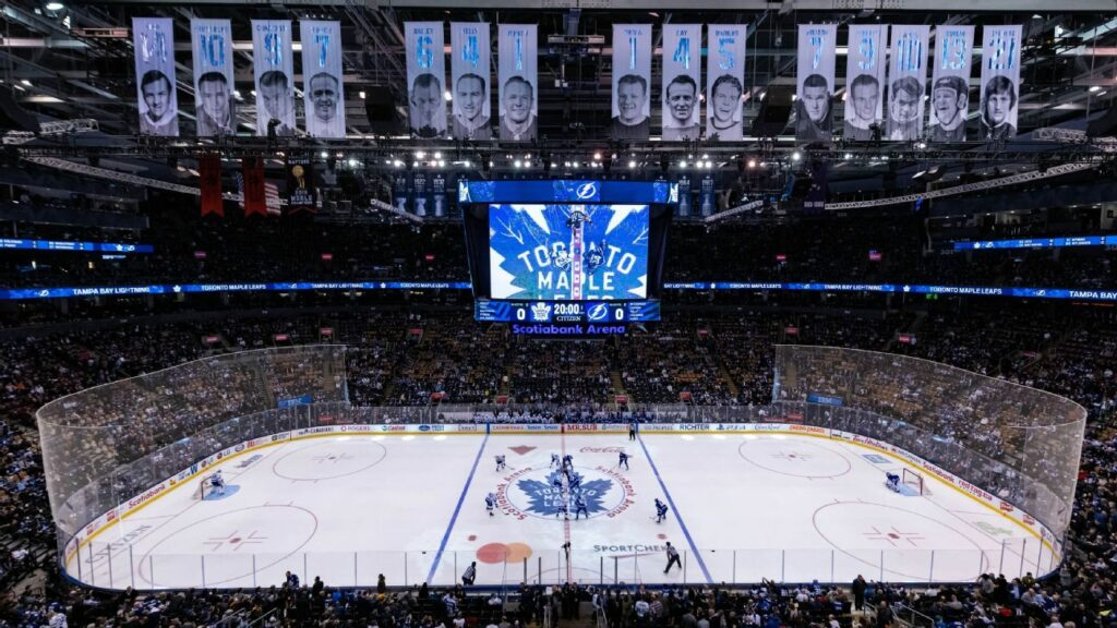 NHL broadcasts to feature 5-second delay, video game cheering