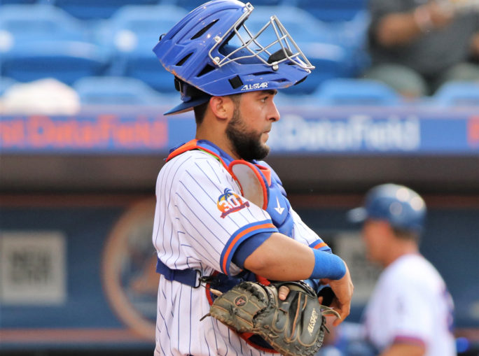 Mets Option Ali Sánchez, Bring Roster Down to 28