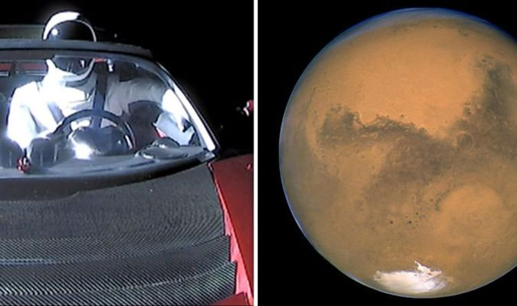 Space News: Elon Musk's Star Mantesla Roadster Passing The Planet Mars | Science | News