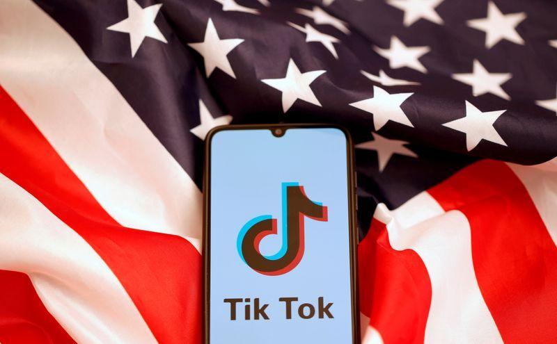U.S. appeals judge's ruling that blocked U.S. ban on TikTok downloads
