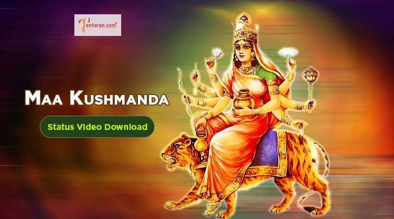 maa kushmandawhatsapp status video download