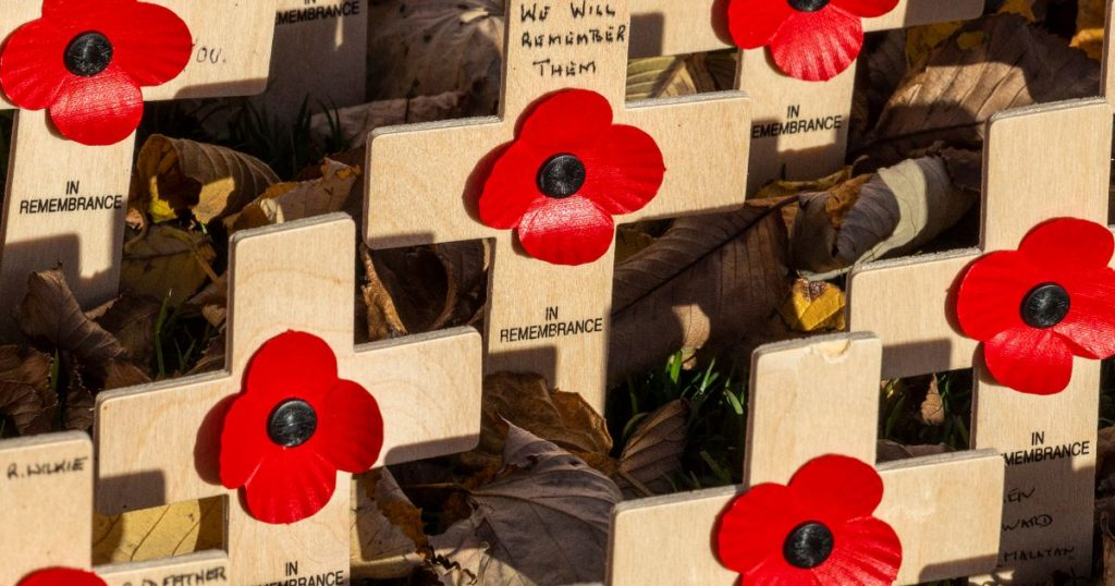 Download your poppies to mark a memorial Sunday from the front door of Scotland