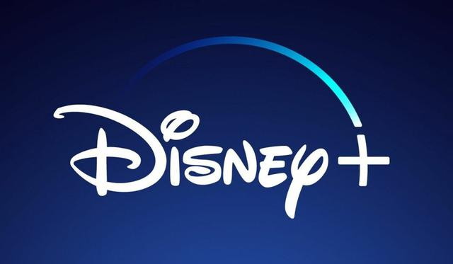 This way you will be able to know how much the chapters of your Disney Plus series and movies weigh.  (Photo: Disney +)