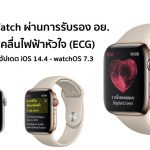 Apple prepares to use 'Apple Watch' to measure ECG in Thailand