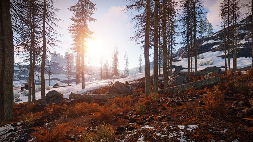 Promoted by Twitch celebrities, Rust blows all its popularity records