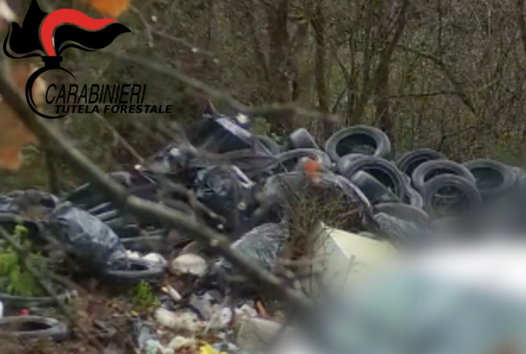 ABUSIVELY EMPTY 800 KG OF SPECIAL WASTE.  ENTREPRENEUR INFORMED BY THE CARABINIERI FOREST.  video-photos