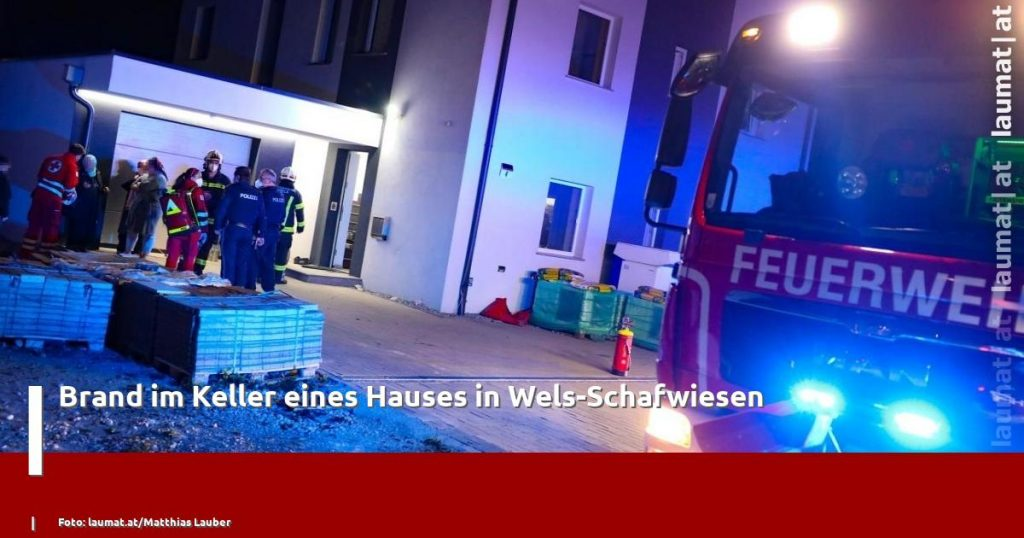 Fire in the basement of a house in Wels-Schafwiesen