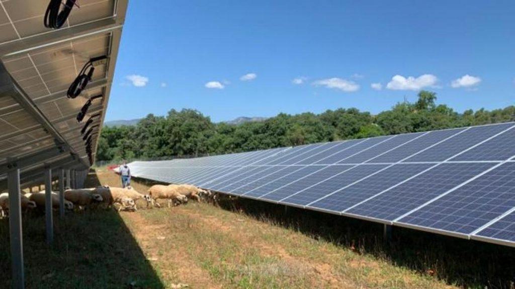 Catalonia urgently needs renewable energy