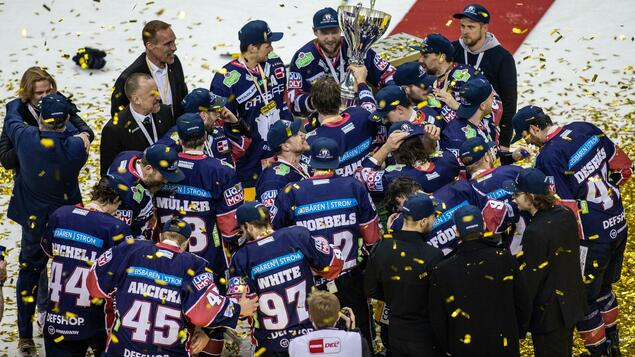 German ice hockey league: the main thing is to survive - sport