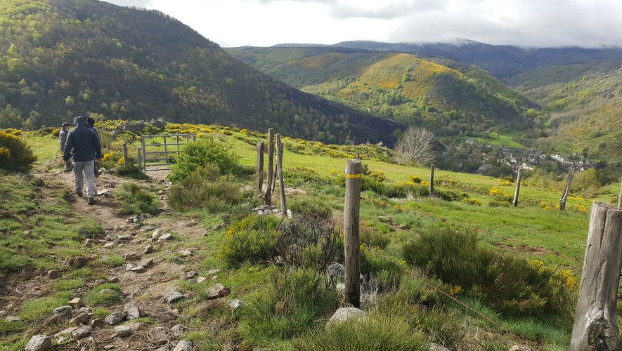 Lozère: a topographic guide to learn about flora and fauna while hiking
