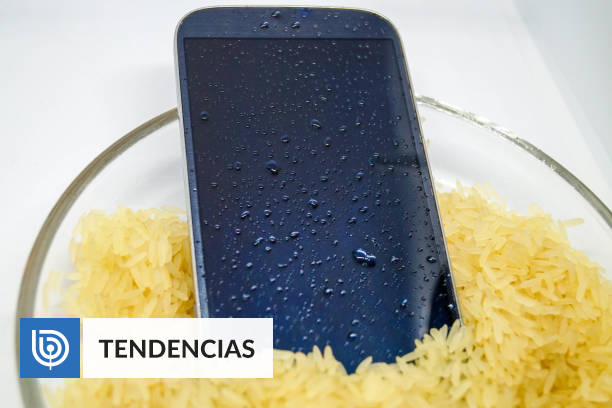 Is your phone still waterproof?  With this application you can discover it |  Technology