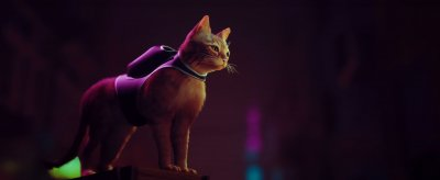 Stray - Long Gameplay Trailer and Release Period for Captivating Cat Adventure Game, Scheduled for PS5, PS4 and PC