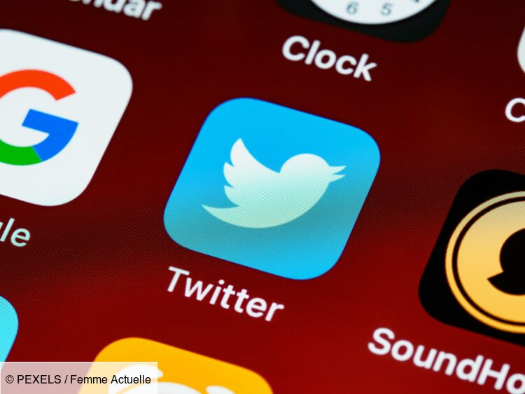 Twitter: our tips for easily downloading a video: Femme Actuelle Le MAG