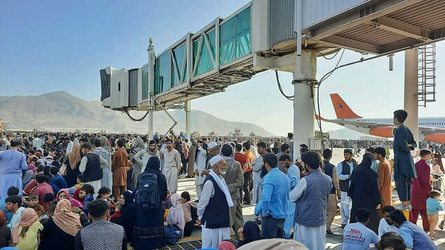 """""""Desperate and abandoned people"""": hundreds of hopes for a flight from Kabul - dramatic scenes at the airport - politics"""
