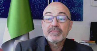 Renzi's guest minister Cingolani attacks environmentalists: