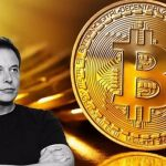 What's Behind the Media's Obsession With Bitcoin and Elon Musk?